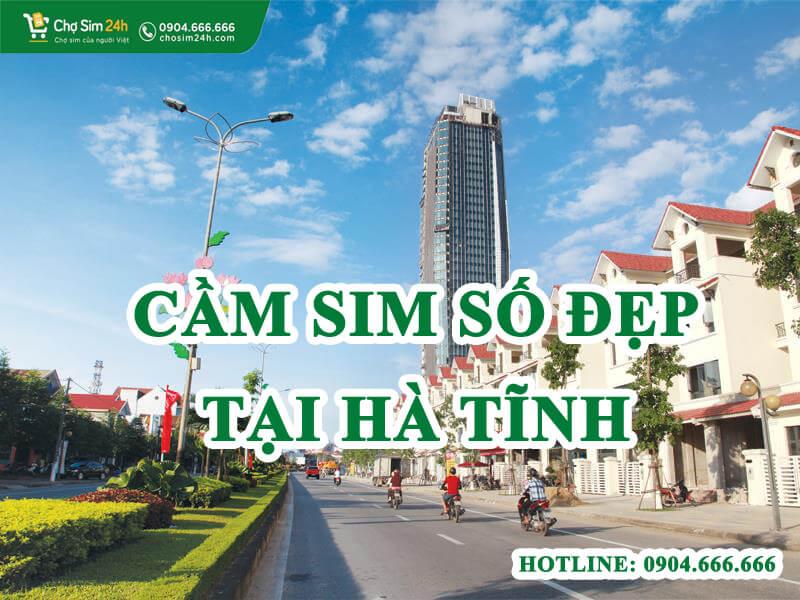 cam-sim-so-dep-tai-ha-tinh_1