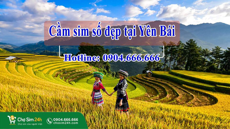 cam-sim-so-dep-tai-yen-bai