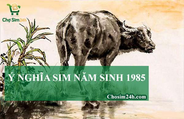sim-nam-sinh-1985-1