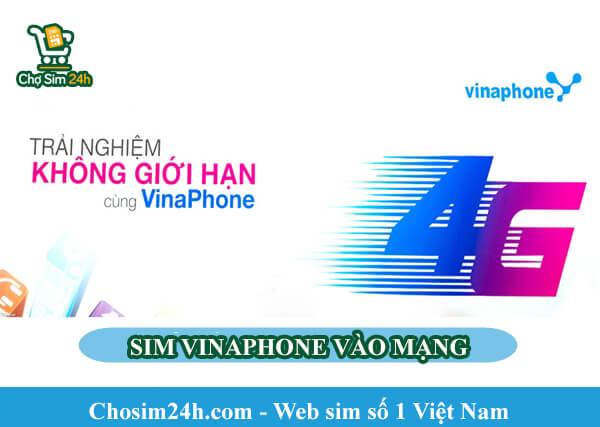 sim-vinaphone-vao-mang