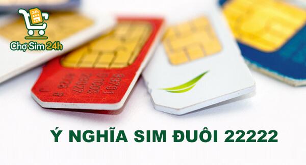 y-nghia-sim-duoi-22222