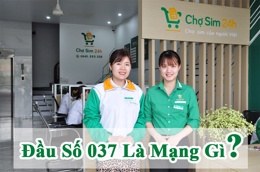 dau-so-037-la-mang-gi