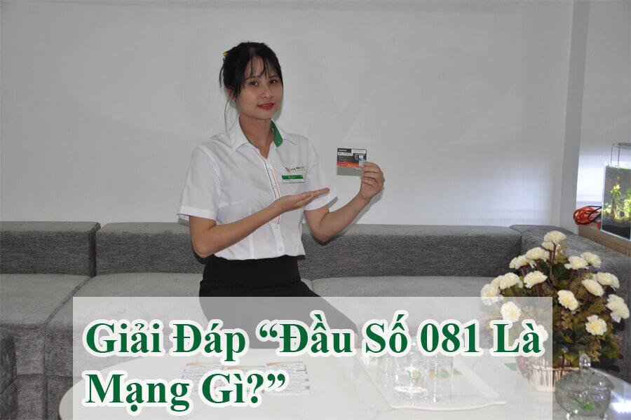 dau-so-081-la-mang-gi-giai-ma-y-nghia-bi-an-sim-dau-so-081-2-1
