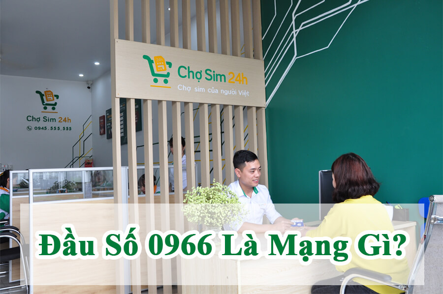 dau-so-0966-la-mang-gi