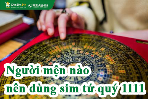 menh-nao-nen-dung-sim-tu-quy-1111