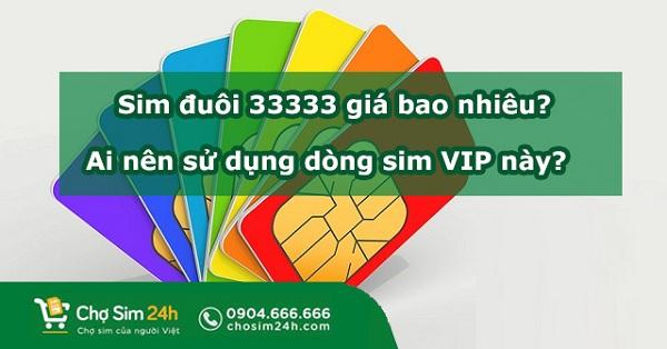 sim-duoi-33333
