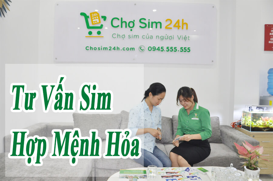 sim-hop-menh-hoa_1