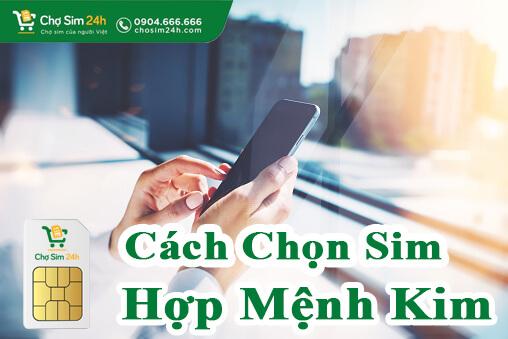sim-hop-menh-kim