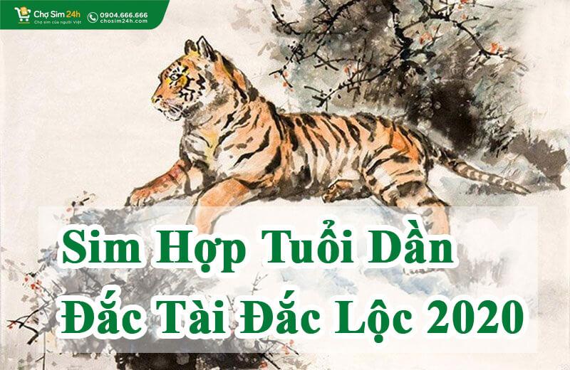 sim-hop-tuoi-dan_1