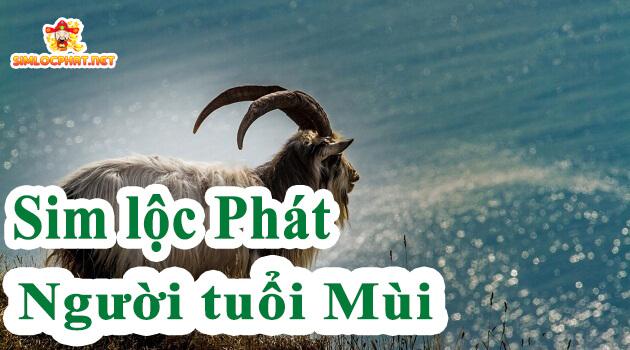 sim-loc-phat-cho-nguoi-tuoi-mui_1