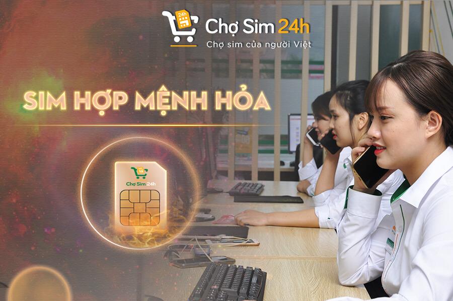 sim-menh-hoa_1