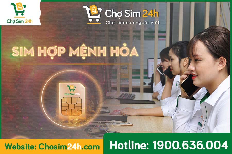 sim-menh-hoa_2