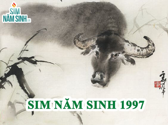 sim-nam-sinh-1997