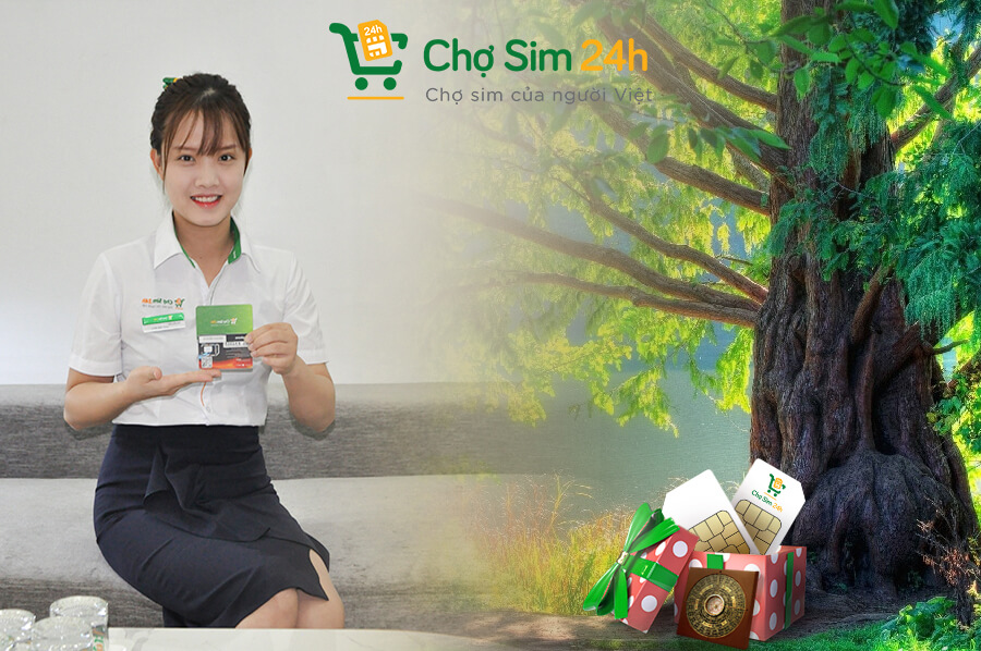 sim-nam-sinh-menh-moc_3