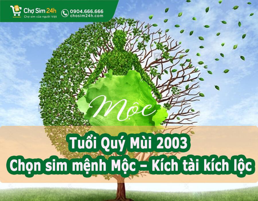sim-nam-sinh-nguoi-menh-moc_1