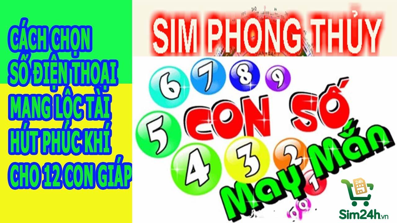 sim-phong-thuy_1