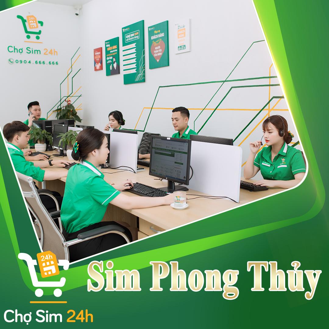 sim-phong-thuy_6