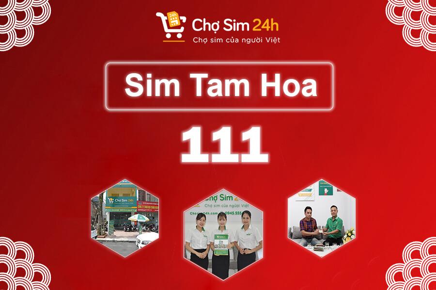 sim-tam-hoa-111