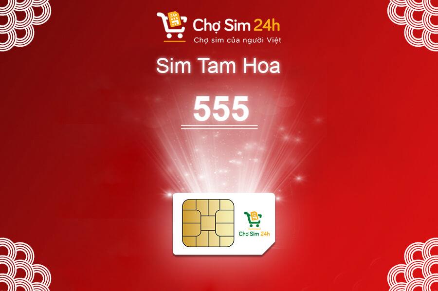 sim-tam-hoa-555