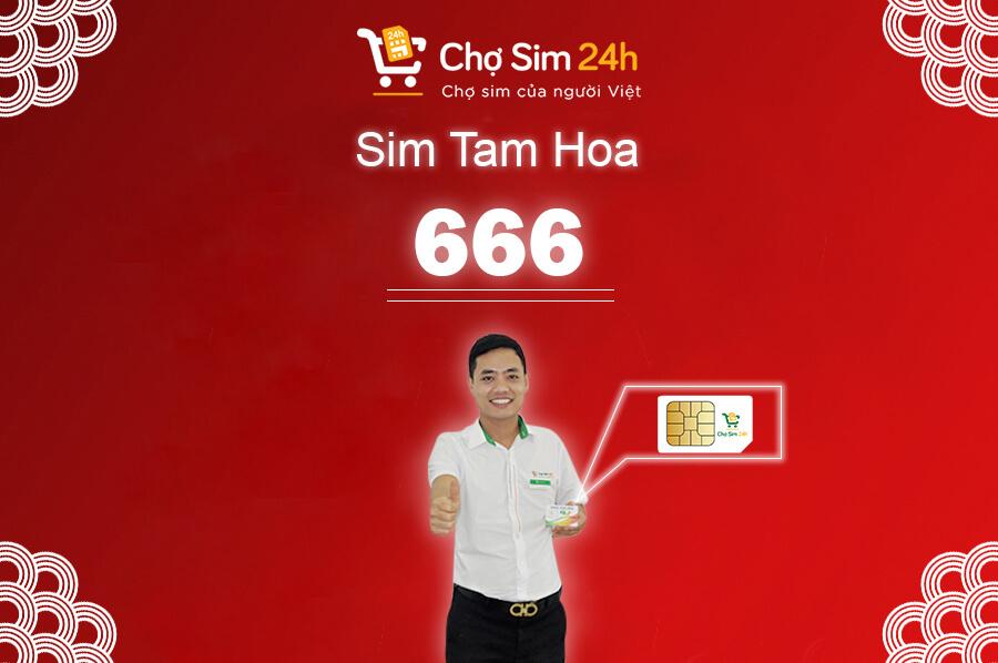 sim-tam-hoa-666
