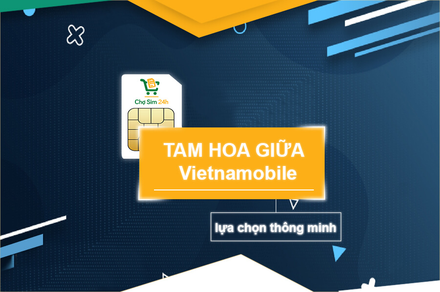 sim-tam-hoa-giua-vietnammobile
