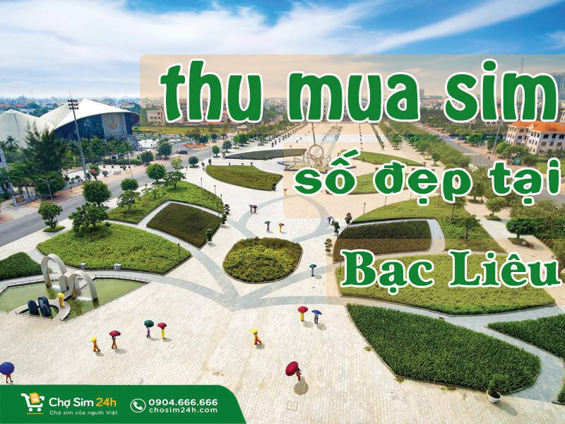 thu-mua-sim-so-dep-tai-bac-lieu_1