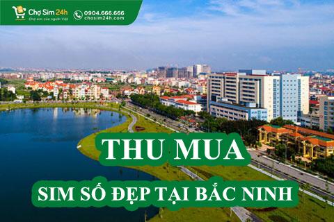 thu-mua-sim-so-dep-tai-bac-ninh_3