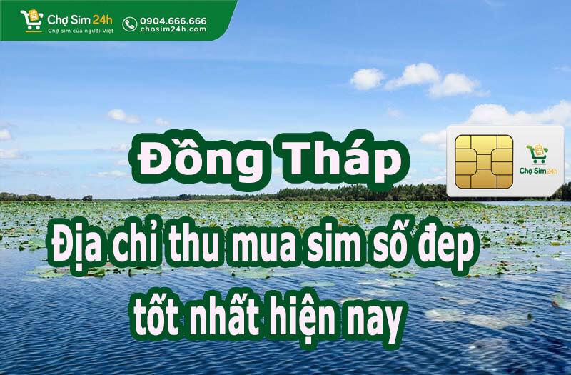 thu-mua-sim-so-dep-tai-dong-thap_1