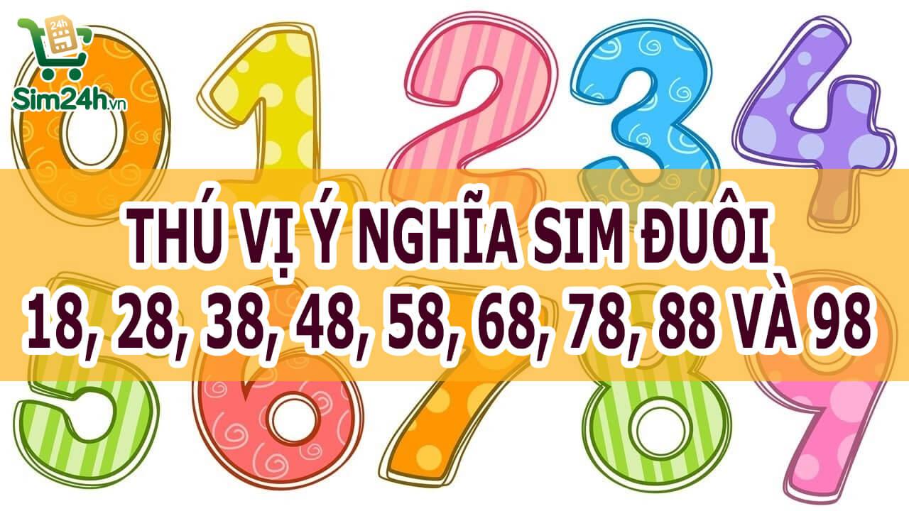 thu-vi-y-nghia-sim-duoi-18-28-38-48-58-68-78-88-98_1