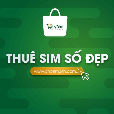 thue-sim-so-dep