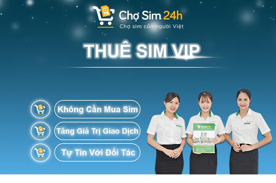 thue-sim-so-dep_1