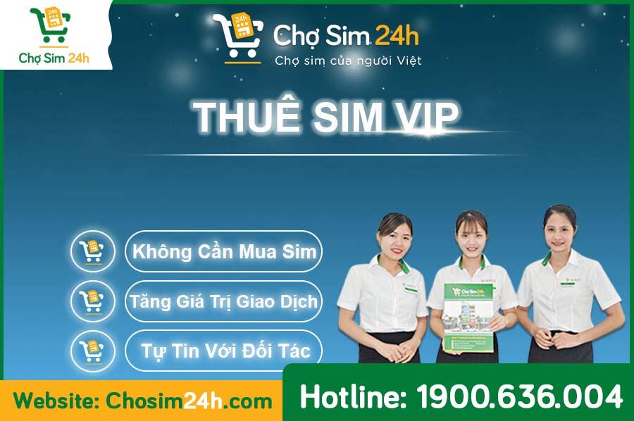 thue-sim-so-dep_2