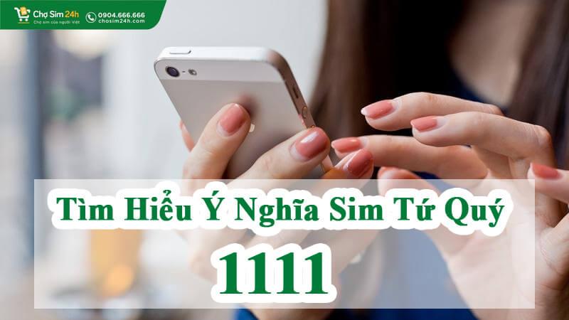 tim-hieu-y-nghia-sim-tu-quy-1111_1
