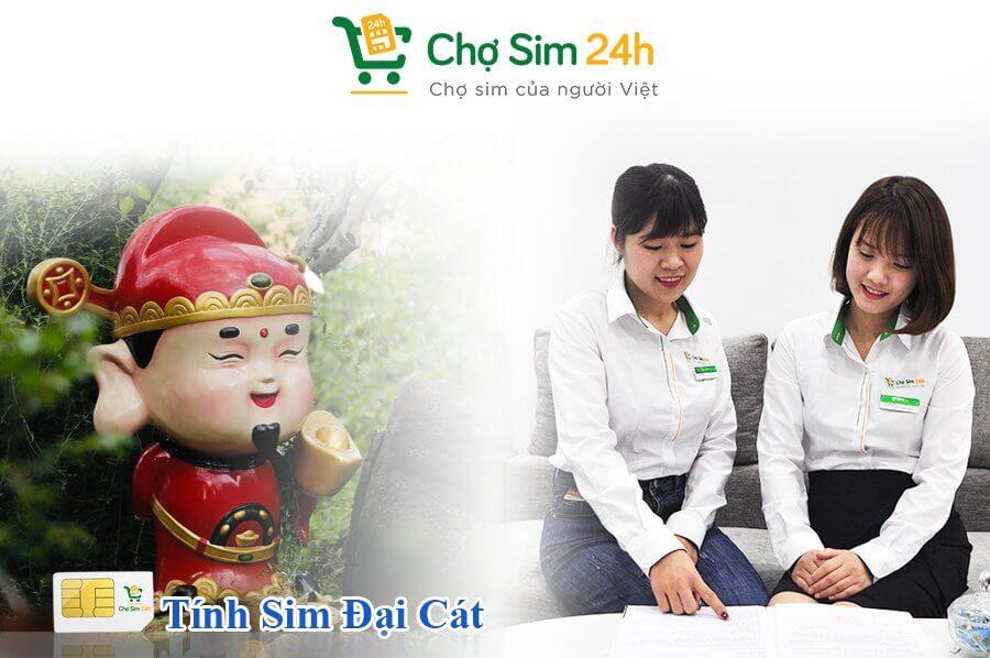 tinh-sim-dai-cat