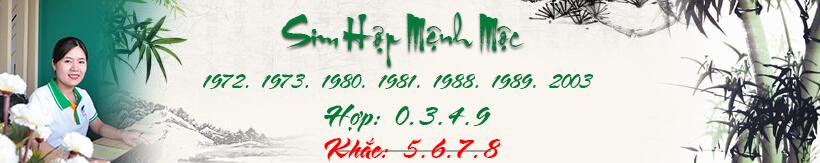 sim-hop-menh-moc