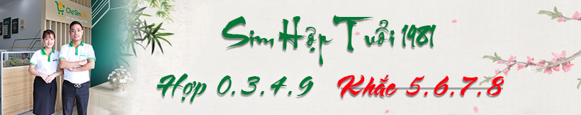 sim-hop-tuoi-1981_1