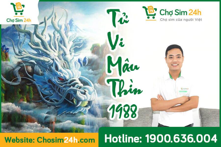 xem-tu-vi-tron-doi-mau-thin-1988-1