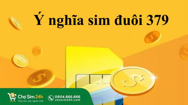 y-nghia-sim-duoi-379-2