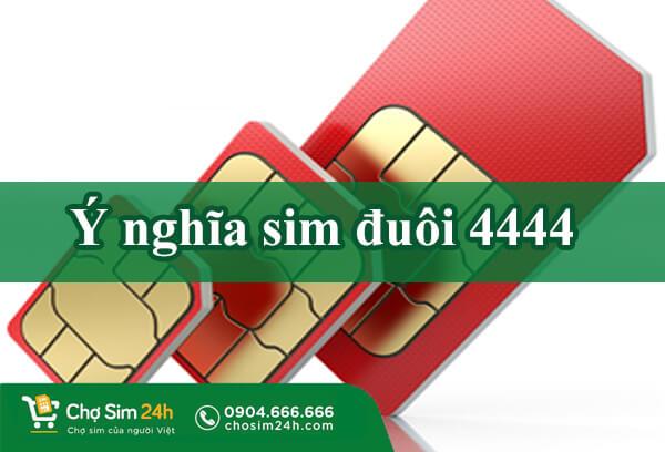 y-nghia-sim-duoi-4444