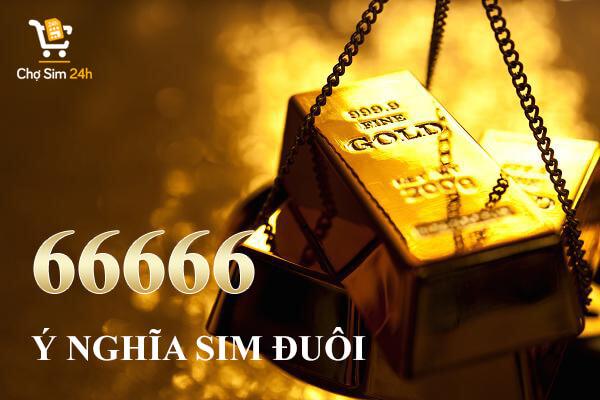 y-nghia-sim-duoi-66666-1