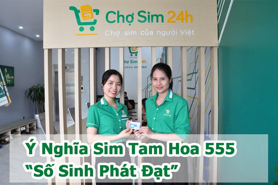y-nghia-sim-tam-hoa-555